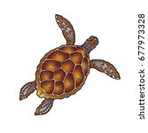 sea turtle illustration | Shutterstock . vector #677973328