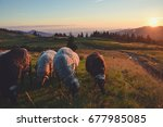 nature  sunset in the mountains ... | Shutterstock . vector #677985085