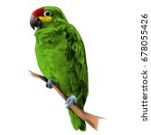 Parrot Amazon Green Sitting On...