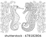 coloring page of seahorse.... | Shutterstock .eps vector #678182806