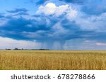 rain clouds over the wheat field