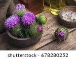 Wild Medicinal Plant Thistle O...