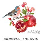 vector illustration with bird... | Shutterstock .eps vector #678342925