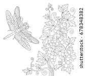 coloring page of dragonfly and... | Shutterstock .eps vector #678348382