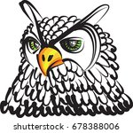 owl  drawing vector illustration