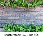 fresh aromatic herbs  mint on... | Shutterstock . vector #678405415