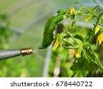 close up shot of a gardener...   Shutterstock . vector #678440722