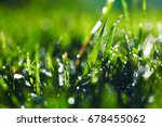 close up of wet grass in... | Shutterstock . vector #678455062