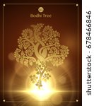 the growth of the golden bodhi... | Shutterstock .eps vector #678466846