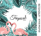 exotic tropical design border... | Shutterstock .eps vector #678545158