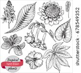 vector collection of hand drawn ... | Shutterstock .eps vector #678549352