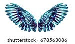 angel wings | Shutterstock . vector #678563086