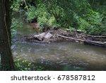 beaver's lodge  beaver  beaver...   Shutterstock . vector #678587812