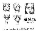 Set Of Alpaca Heads. Hand Draw...