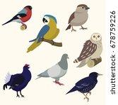 set of birds. | Shutterstock .eps vector #678759226