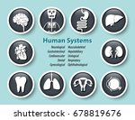 set of human systems icon ....