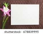 white blank greeting card with...   Shutterstock . vector #678839995