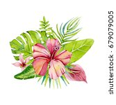 tropical flowers and leaves   Shutterstock . vector #679079005