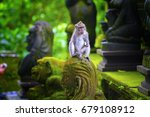 Monkeys In Ubud Monkey Forest ...