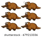 platypus with different facial... | Shutterstock .eps vector #679213336