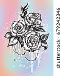 hand drawn beautiful roses in... | Shutterstock .eps vector #679242346