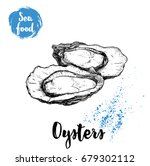 hand drawn oysters composition. ...