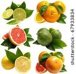 fruit citrus | Shutterstock . vector #67933834