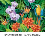 background with exotic tropical ... | Shutterstock .eps vector #679350382