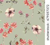 watercolor seamless floral... | Shutterstock . vector #679357372