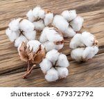 fluffy cotton ball of cotton... | Shutterstock . vector #679372792