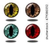 Glossy Animal Eyeballs In Four...