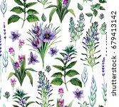 watercolor collection of herbs... | Shutterstock . vector #679413142