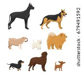 illustrations set of different... | Shutterstock . vector #679491592