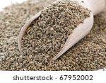 Small photo of Ajowan Seed