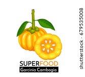 garcinia cambogia vector icon....   Shutterstock .eps vector #679535008