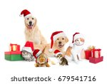 Stock photo funny pets in santa hats with christmas gifts on white background 679541716