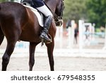 close up image of horse with... | Shutterstock . vector #679548355