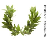 laurel wreath isolated on white ... | Shutterstock . vector #67963633