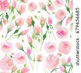 tender delicate cute elegant...   Shutterstock . vector #679656685
