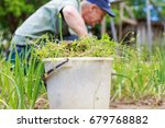 a man is weeding beds. man in... | Shutterstock . vector #679768882