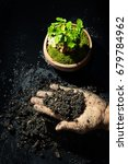 handle soil and plant green... | Shutterstock . vector #679784962