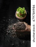 handle soil and plant green... | Shutterstock . vector #679784986