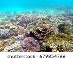 coral reef | Shutterstock . vector #679854766
