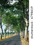 the road to albi  midi  ... | Shutterstock . vector #6798619