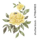 watercolor peony on a white... | Shutterstock . vector #679869805
