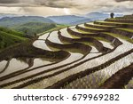 rice field in thailand you may... | Shutterstock . vector #679969282