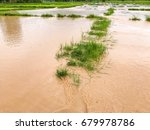 agriculture rice field flooded... | Shutterstock . vector #679978786