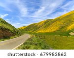 spring wildflowers along...   Shutterstock . vector #679983862
