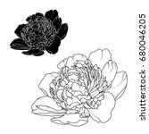 peony rose flowers black and... | Shutterstock .eps vector #680046205