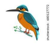 kingfisher . predatory birds... | Shutterstock . vector #680127772